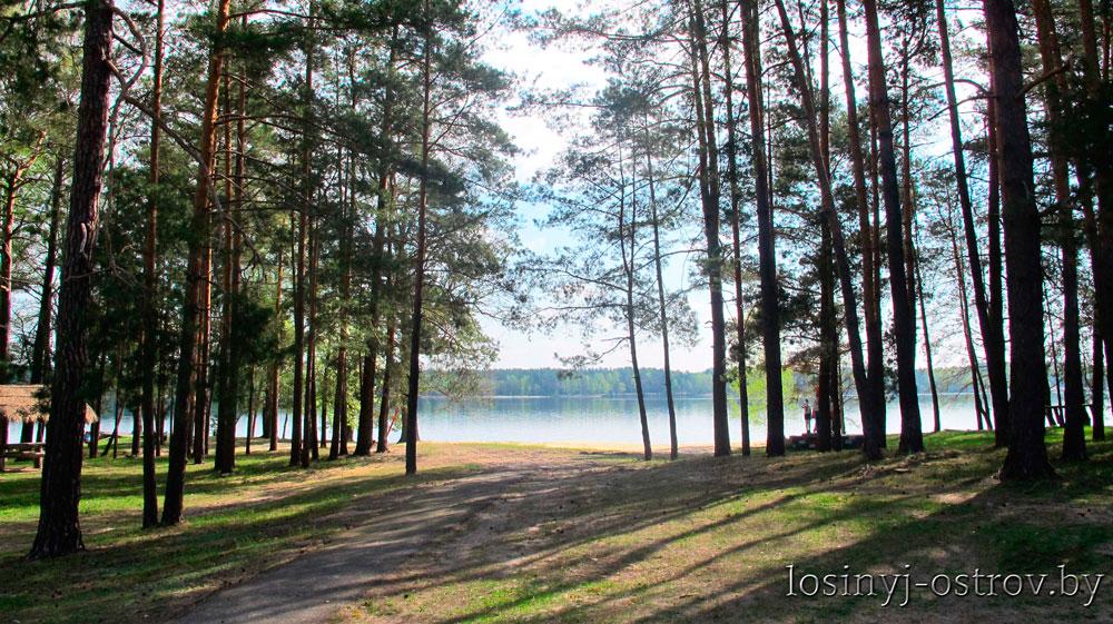Rybalka-v-Belarusi---Losinyj-ostrov-8